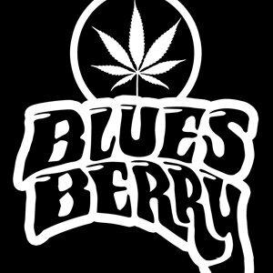 Blues Berry 歌手頭像