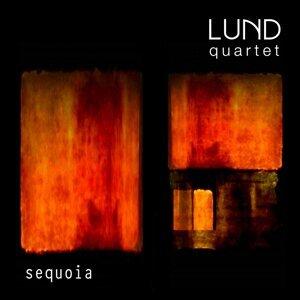 Lund Quartet 歌手頭像