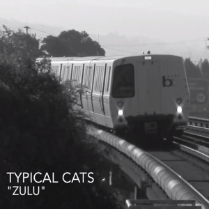 Typical Cats 歌手頭像