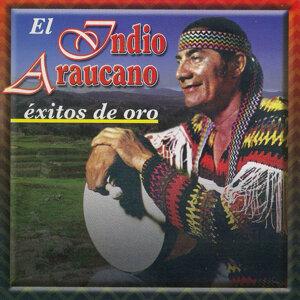 El Indio Araucano 歌手頭像
