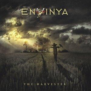 Envinya 歌手頭像