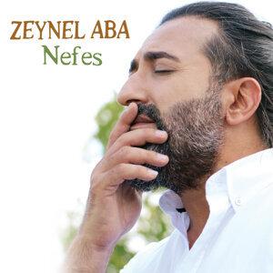 Zeynel Aba