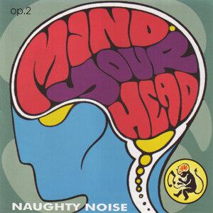 Naughty Noise 歌手頭像