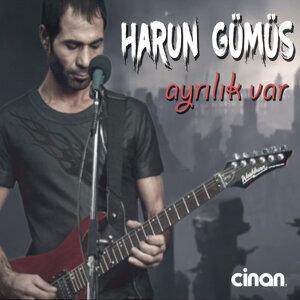 Harun Gümüş 歌手頭像