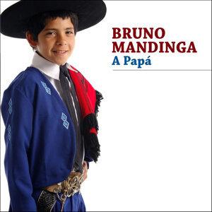 Bruno Mandinga 歌手頭像