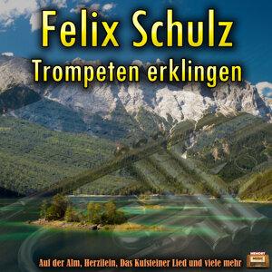 Felix Schulz 歌手頭像