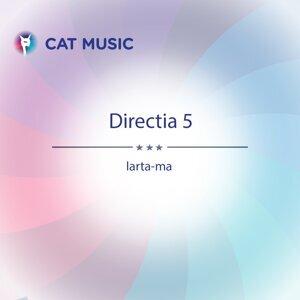 Directia 5 歌手頭像