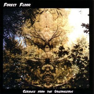 Forest Floors