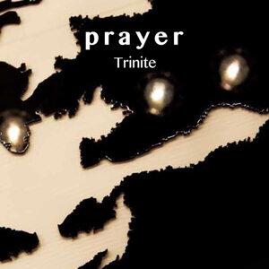 Trinite 歌手頭像