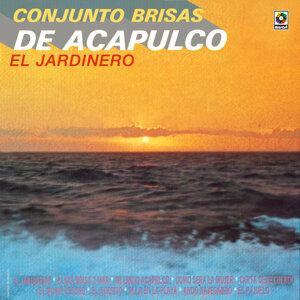 Conjunto Brisas De Acapulco 歌手頭像