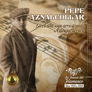 Pepe Aznalcóllar 歌手頭像