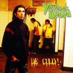 Yerba Brava 歌手頭像