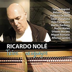 Ricardo Nolé 歌手頭像
