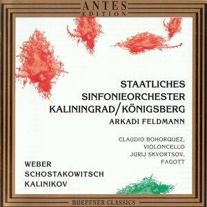 Staatliches Symphonieorchester Kaliningrad / Königsberg, Arkadi Feldmann 歌手頭像