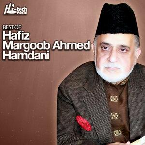 Hafiz Marghoob Ahmed Hamdani 歌手頭像