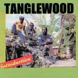 Tanglewood 歌手頭像