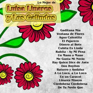 Luisa Linares|Los Galindos 歌手頭像