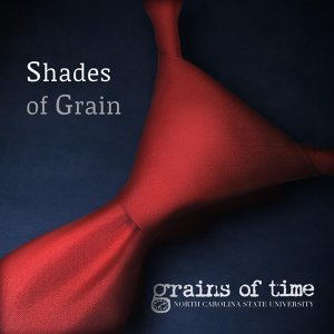 Grains of Time 歌手頭像