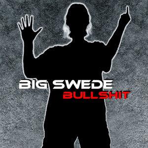 Big Swede 歌手頭像