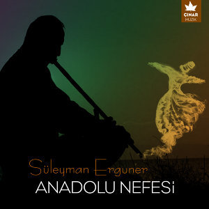 Süleyman Ergüner 歌手頭像