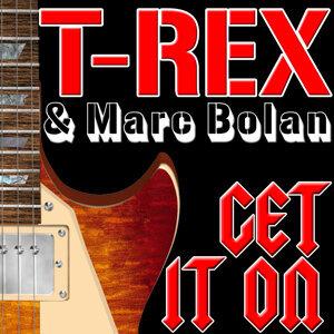 T-Rex | Marc Bolan 歌手頭像