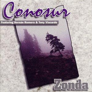 Zonda 歌手頭像
