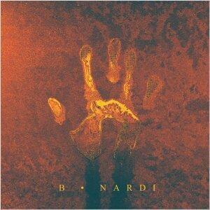 B Nardi 歌手頭像