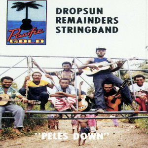 DROPSUN REMAINDERS STRING BAND 歌手頭像