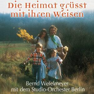 Bernd Wefelmeyer mit dem Studio-Orchester Berlin 歌手頭像