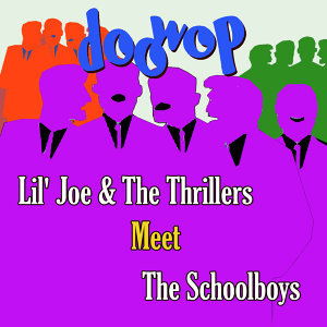 Lil' Joe & The Thrillers / The Schoolboys 歌手頭像