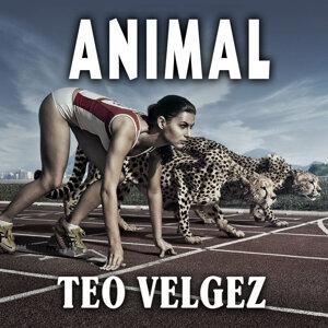 Teo Valgez 歌手頭像
