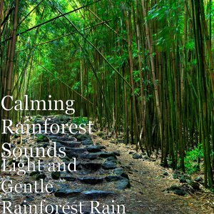 Calming Rainforest Sounds 歌手頭像