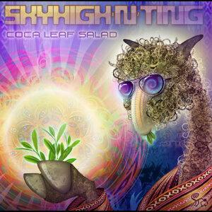 Skyhigh N Ting 歌手頭像
