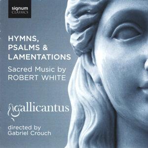 Gallicantus 歌手頭像