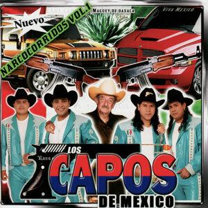 Los Capos De Mexico 歌手頭像