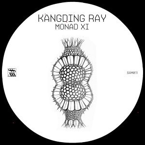 Kangding Ray 歌手頭像