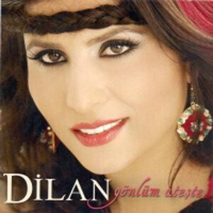 Dilans 歌手頭像