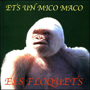 Els Floquets 歌手頭像