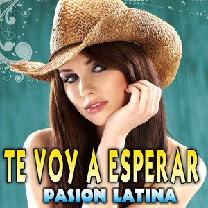 Pasion Latina 歌手頭像