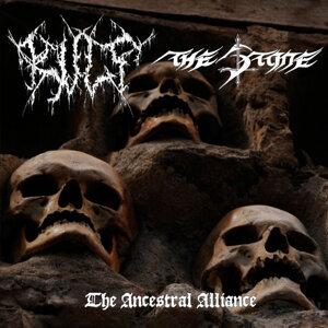 The Stone, Kult 歌手頭像