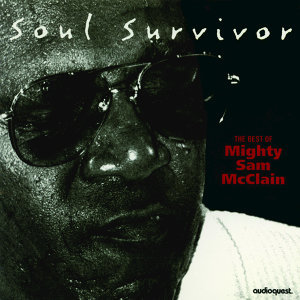 Mighty Sam McClain 歌手頭像