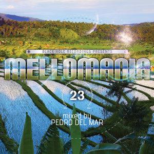 Pedro Del Mar - Mellomania 23 歌手頭像