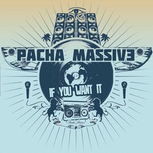 Pacha Massive 歌手頭像