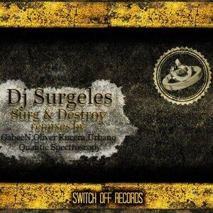 DJ Surgeles 歌手頭像