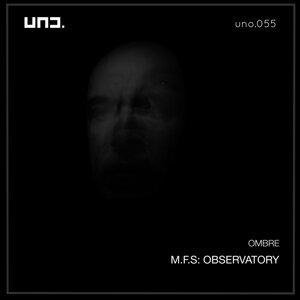 M.F.S: Observatory 歌手頭像
