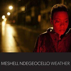 MeShell Ndegeocello (自由鳥 - 蜜雪兒) 歌手頭像