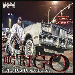 Big Rigo 歌手頭像