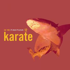 KARATE 歌手頭像