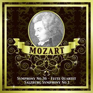 Slovenian Philharmonic Orchestra|Camerata Romana|Salzburg Soloists 歌手頭像