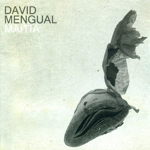 David Mengual 歌手頭像
